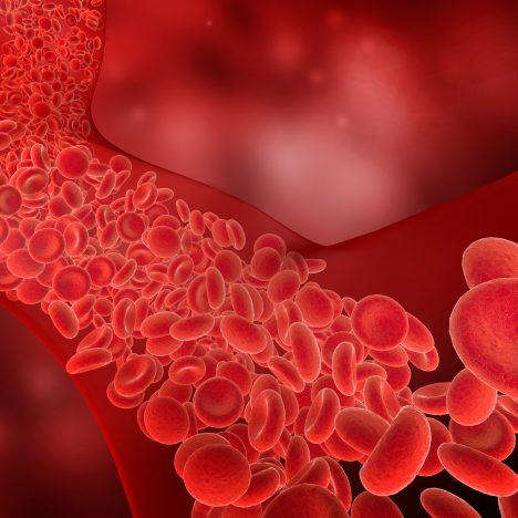 Blood Antibody
