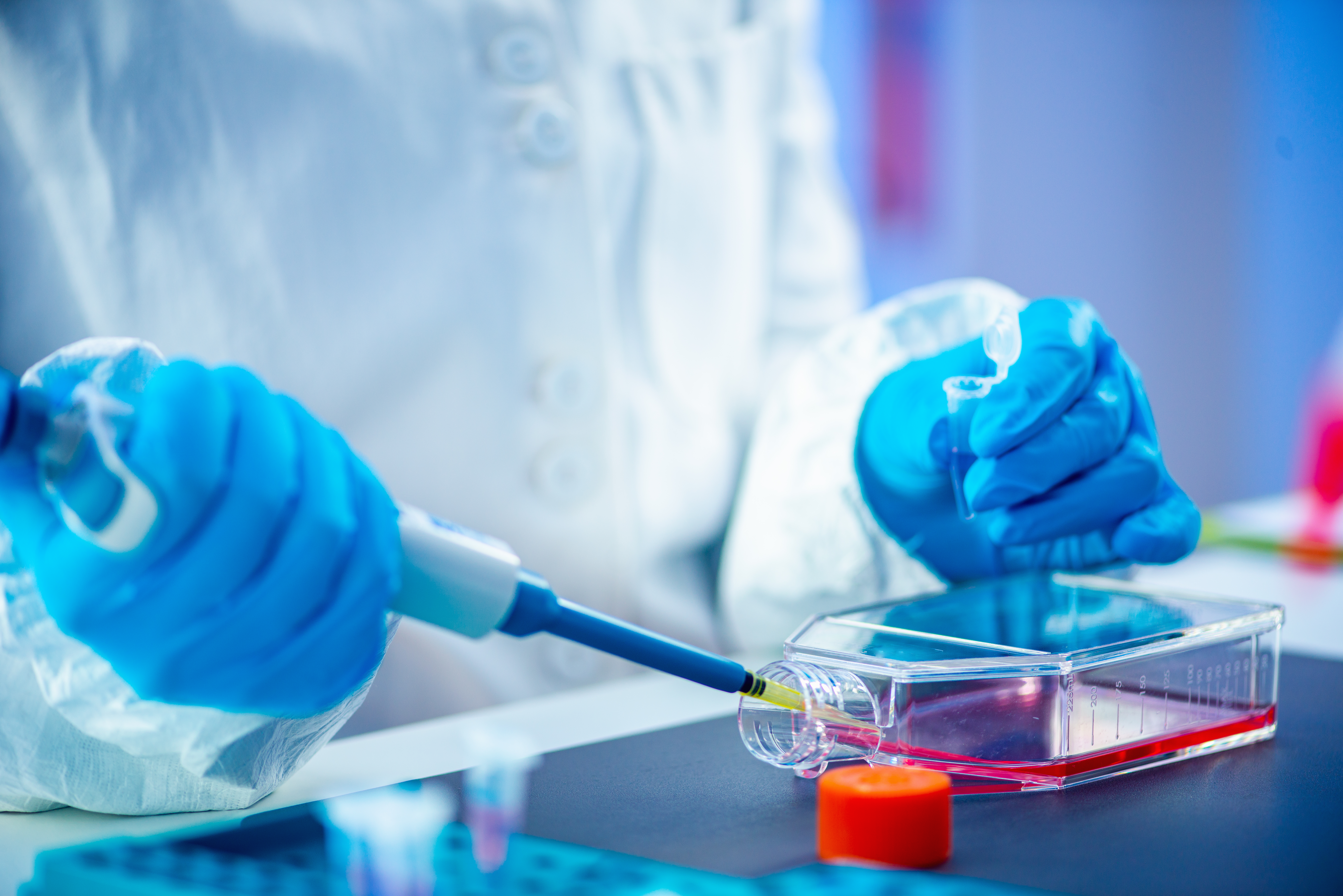 Nucleic acid amplification in infectiology